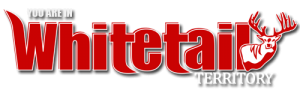 wt_logo_blog_adspace